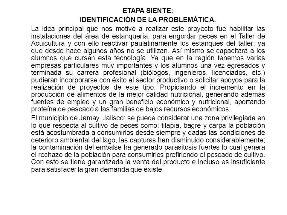 ETAPA SIENTE: IDENTIFICACIÓN DE LA PROBLEMÁTICA.
