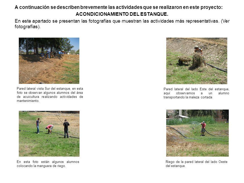 A continuación se describen brevemente las actividades que se realizaron en este proyecto: ACONDICIONAMIENTO DEL ESTANQUE. En este apartado se present