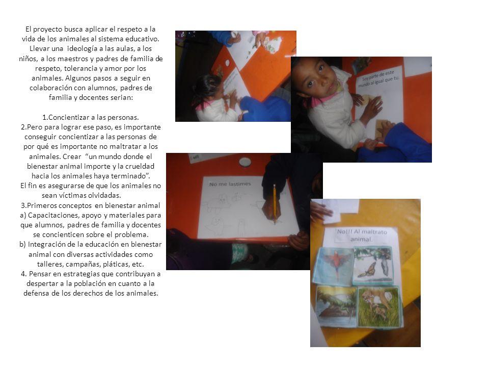 El proyecto busca aplicar el respeto a la vida de los animales al sistema educativo.