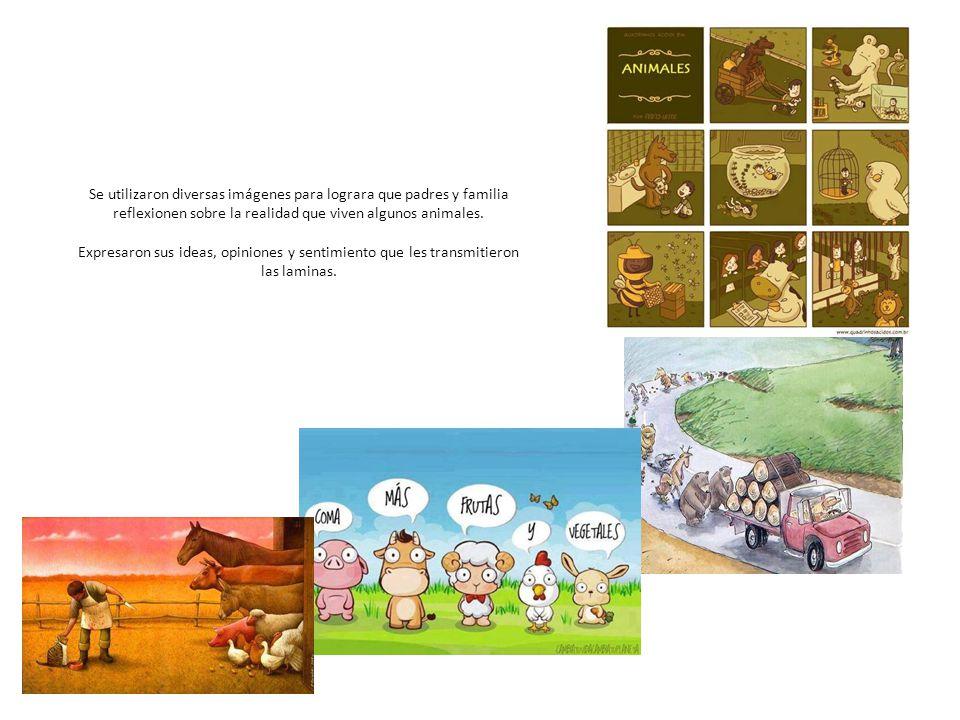 Se utilizaron diversas imágenes para lograra que padres y familia reflexionen sobre la realidad que viven algunos animales.