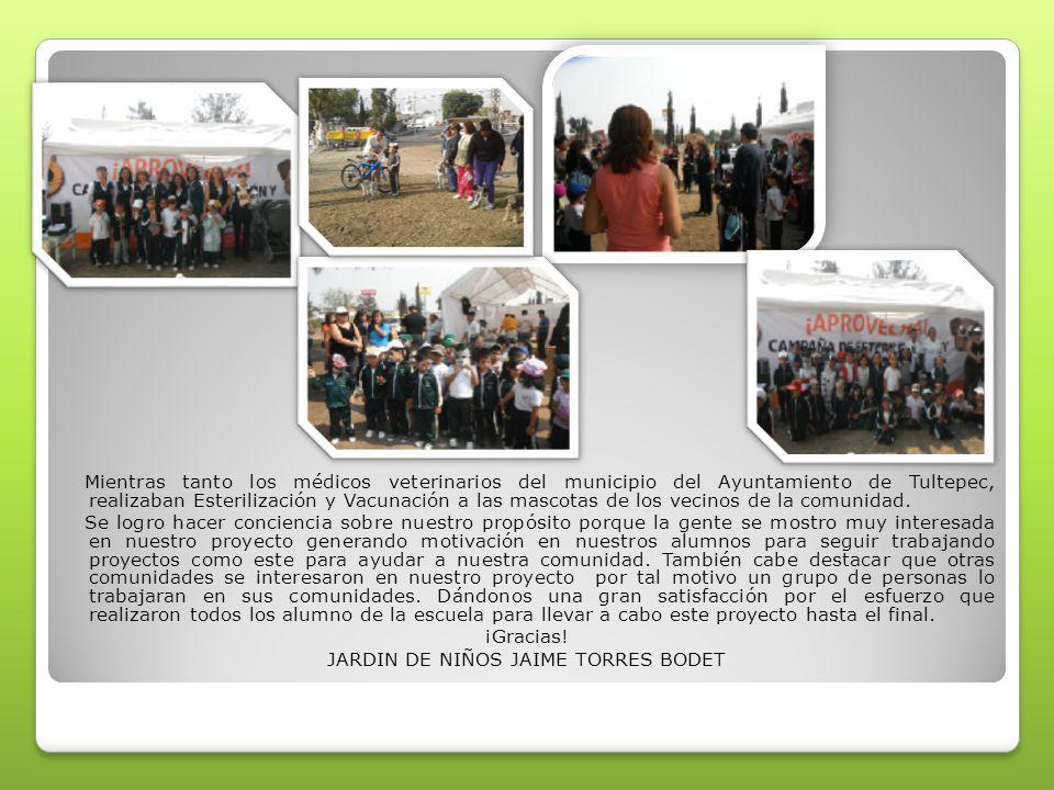 Mientras tanto los médicos veterinarios del municipio del Ayuntamiento de Tultepec, realizaban Esterilización y Vacunación a las mascotas de los vecin