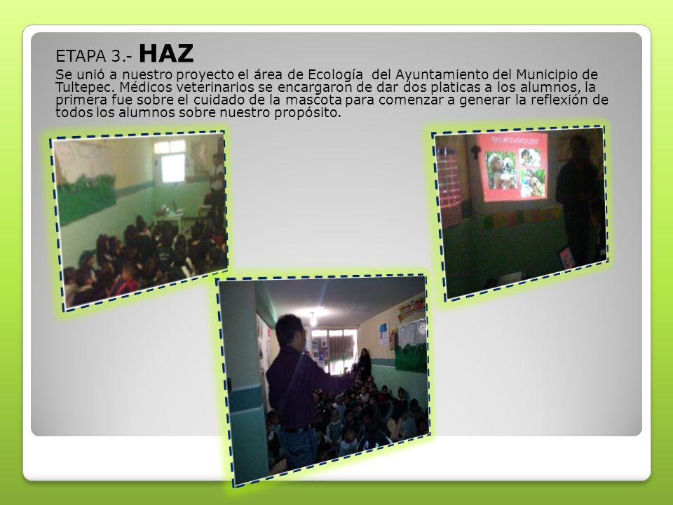 ETAPA 3.- HAZ Se unió a nuestro proyecto el área de Ecología del Ayuntamiento del Municipio de Tultepec. Médicos veterinarios se encargaron de dar dos