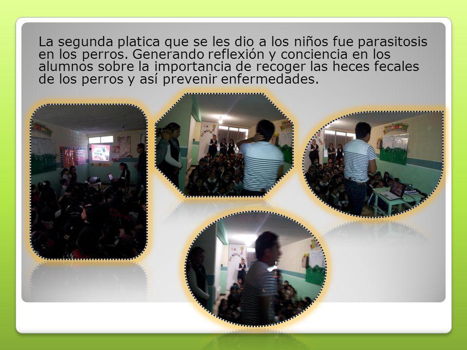 Todos los grupos de la escuela se unieron al proyecto trabajaron actividades diversas como por ejemplo; entrevistaron a los vecinos que tienen un perro; los alumnos preguntaron ¿Cómo cuidan a su perro.