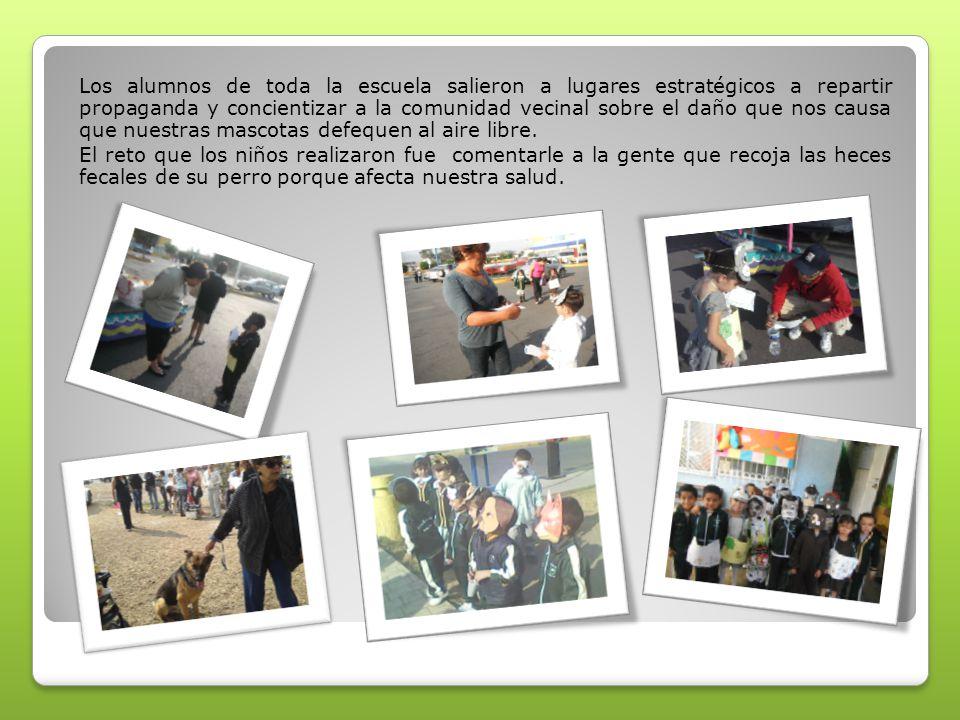 Los alumnos de toda la escuela salieron a lugares estratégicos a repartir propaganda y concientizar a la comunidad vecinal sobre el daño que nos causa