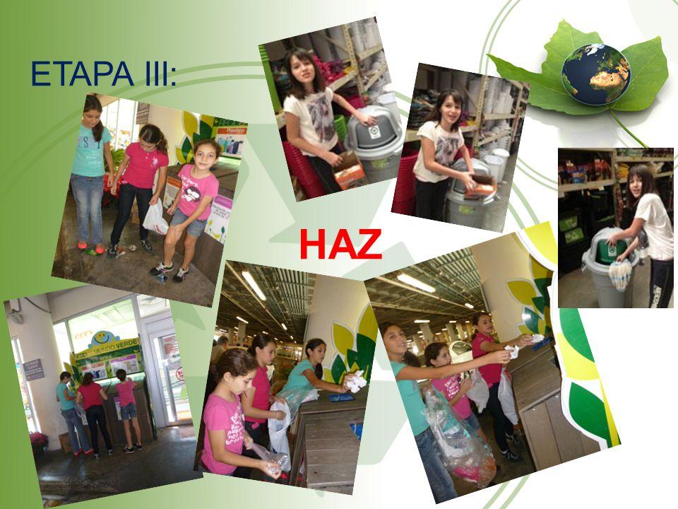 ETAPA III: HAZ