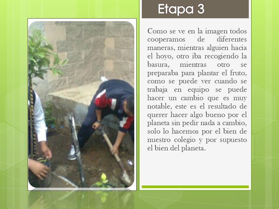 Como se ve en la imagen todos cooperamos de diferentes maneras, mientras alguien hacia el hoyo, otro iba recogiendo la basura, mientras otro se prepar