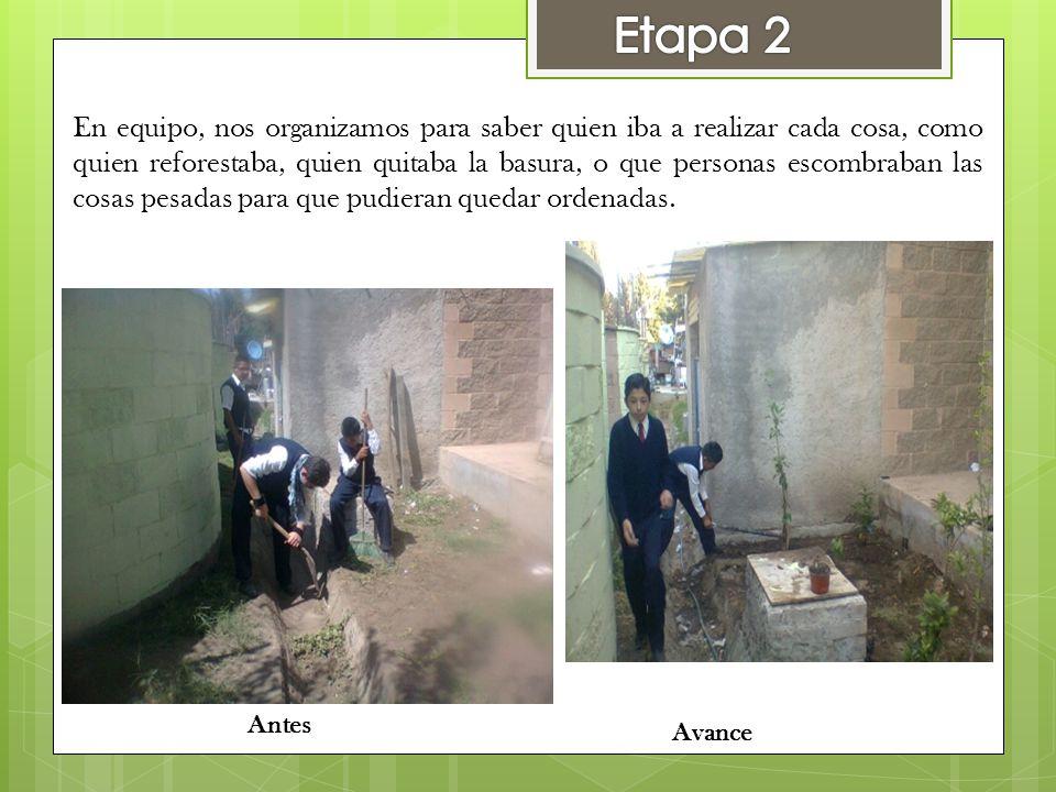 En equipo, nos organizamos para saber quien iba a realizar cada cosa, como quien reforestaba, quien quitaba la basura, o que personas escombraban las
