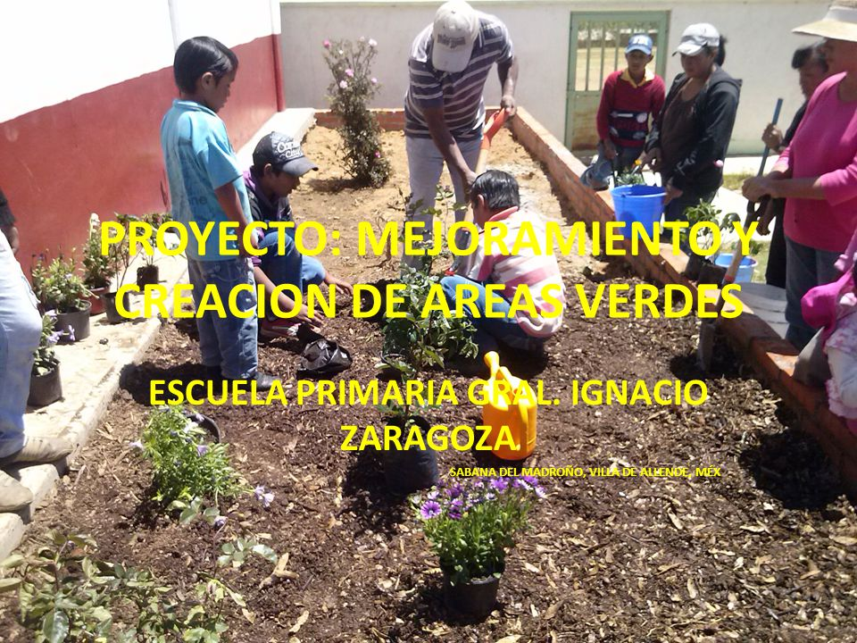 PROYECTO: MEJORAMIENTO Y CREACION DE AREAS VERDES ESCUELA PRIMARIA GRAL. IGNACIO ZARAGOZA SABANA DEL MADROÑO, VILLA DE ALLENDE, MÉX