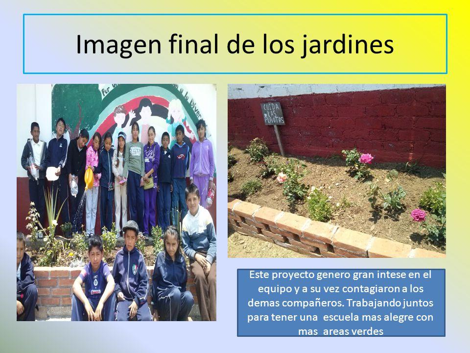 Imagen final de los jardines Este proyecto genero gran intese en el equipo y a su vez contagiaron a los demas compañeros. Trabajando juntos para tener
