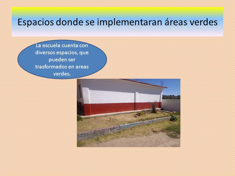 Espacios donde se implementaran áreas verdes La escuela cuenta con diversos espacios, que pueden ser trasformados en areas verdes.