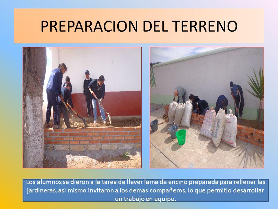PREPARACION DEL TERRENO Los alumnos se dieron a la tarea de llever lama de encino preparada para rellener las jardineras. asi mismo invitaron a los de