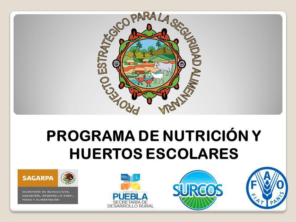 PROGRAMA DE NUTRICIÓN Y HUERTOS ESCOLARES