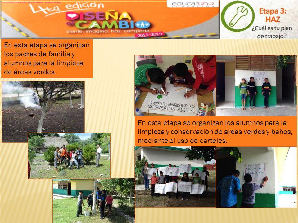 En esta etapa se organizan los padres de familia y alumnos para la limpieza de áreas verdes. En esta etapa se organizan los alumnos para la limpieza y