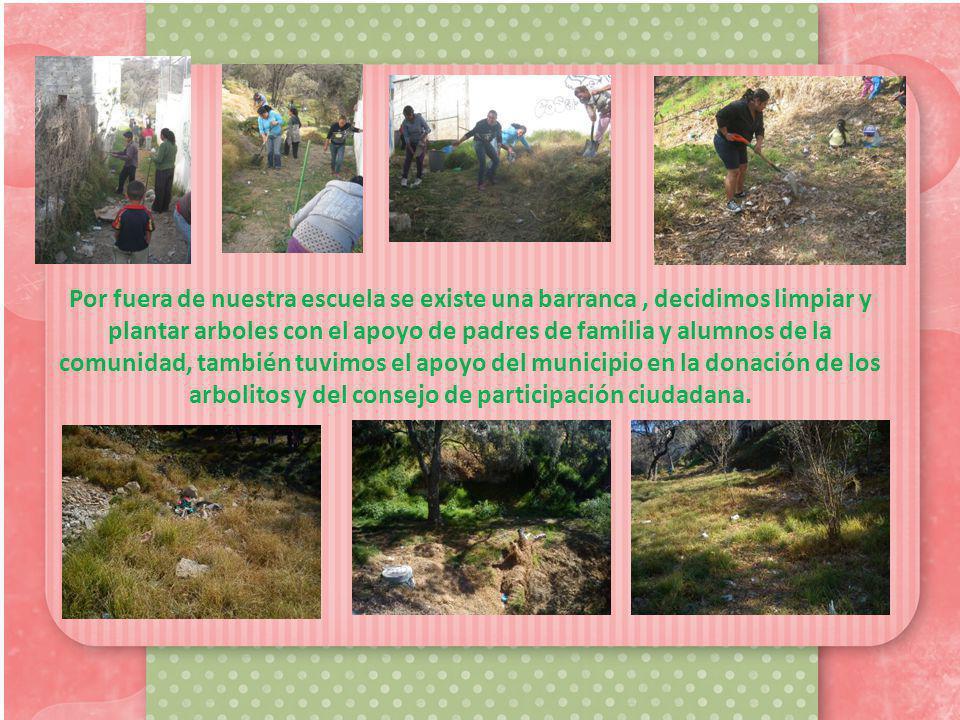 Por fuera de nuestra escuela se existe una barranca, decidimos limpiar y plantar arboles con el apoyo de padres de familia y alumnos de la comunidad, también tuvimos el apoyo del municipio en la donación de los arbolitos y del consejo de participación ciudadana.