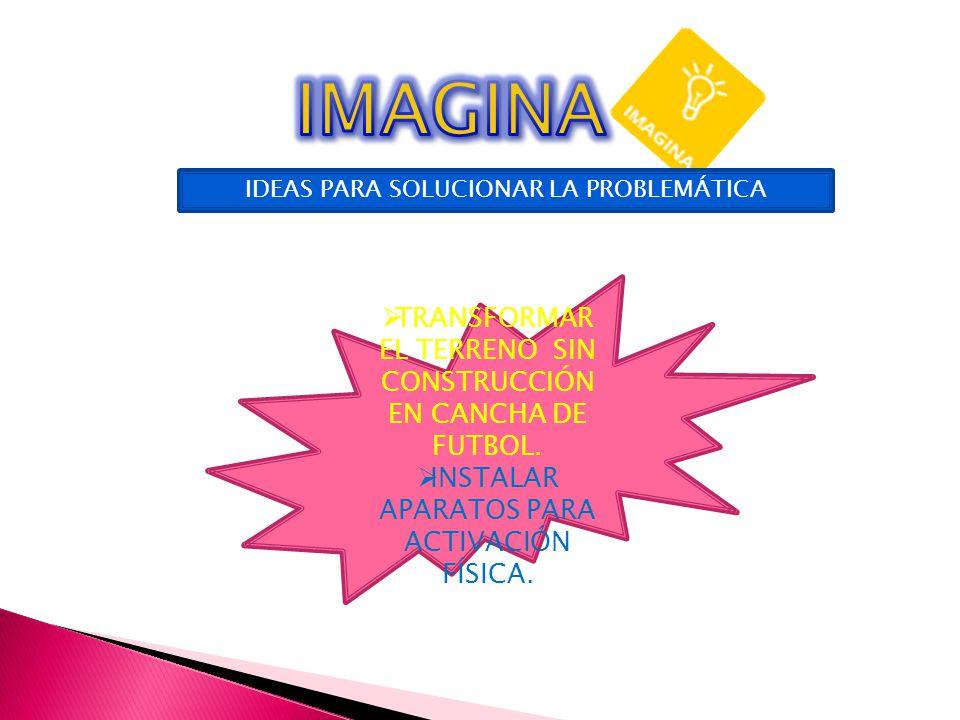 IDEAS PARA SOLUCIONAR LA PROBLEMÁTICA TRANSFORMAR EL TERRENO SIN CONSTRUCCIÓN EN CANCHA DE FUTBOL.