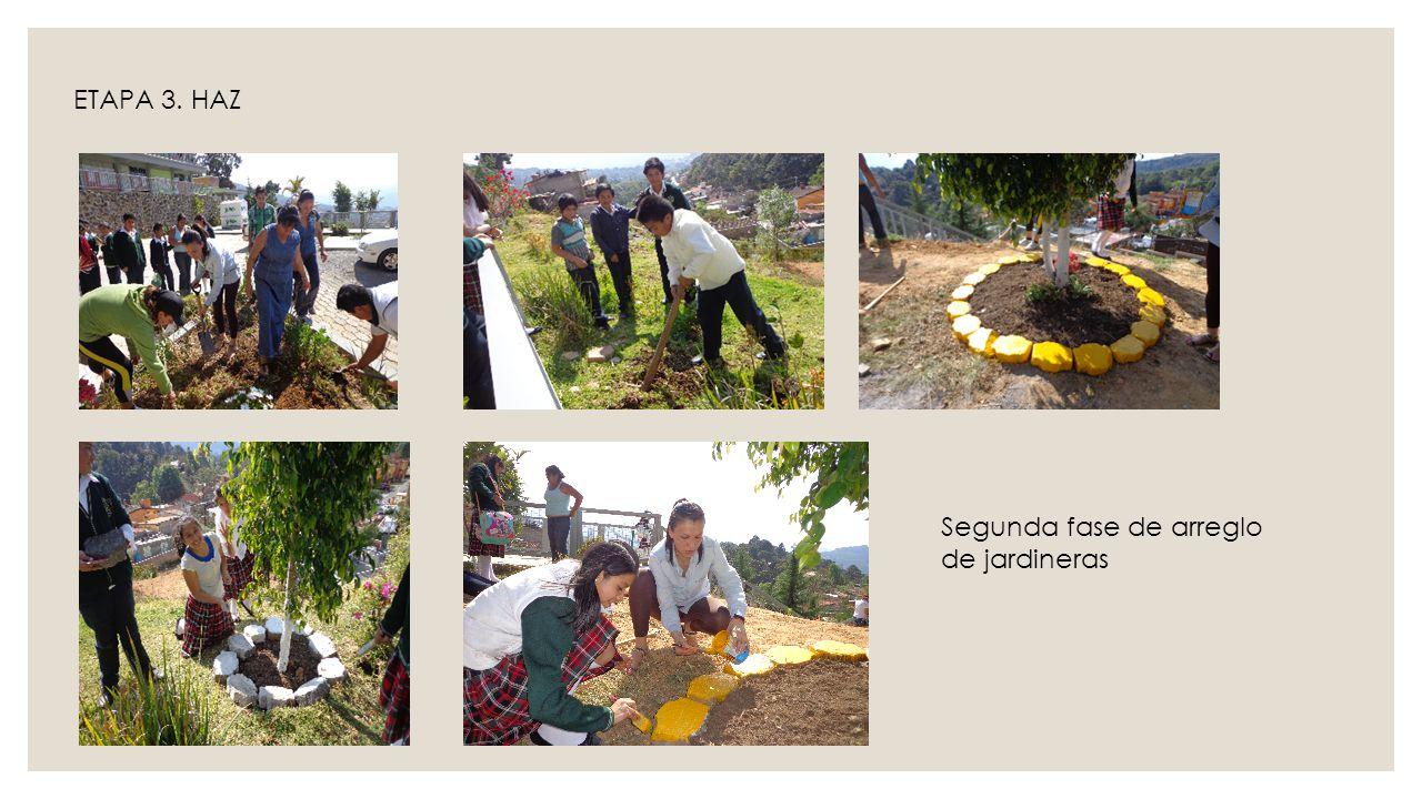 ETAPA 3. HAZ Segunda fase de arreglo de jardineras