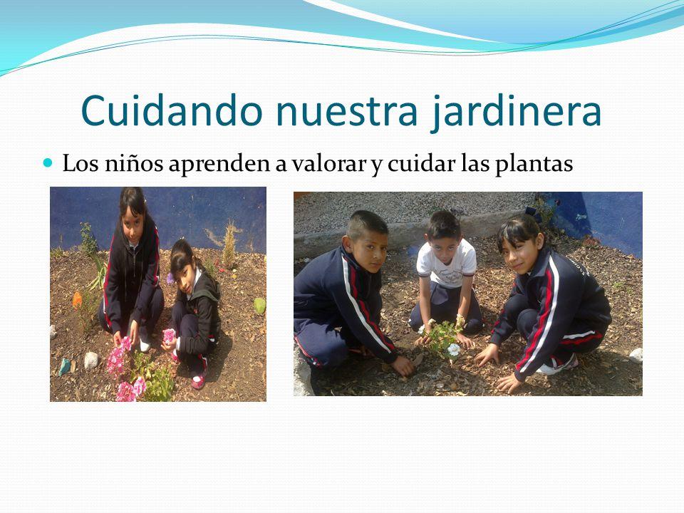 Cuidando nuestra jardinera Los niños aprenden a valorar y cuidar las plantas