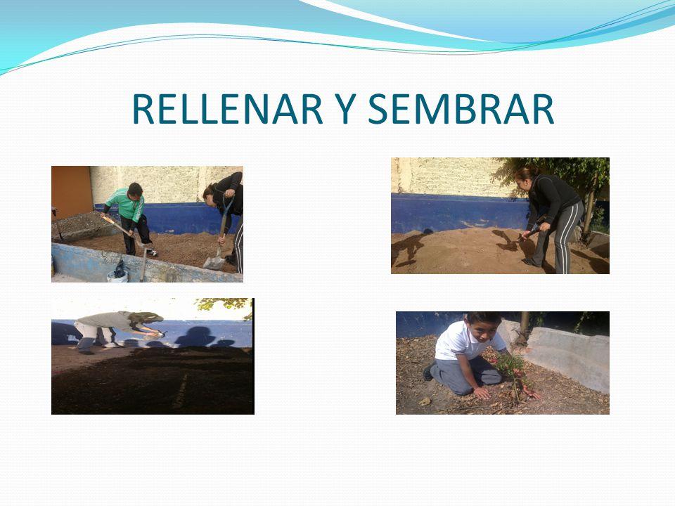 RELLENAR Y SEMBRAR