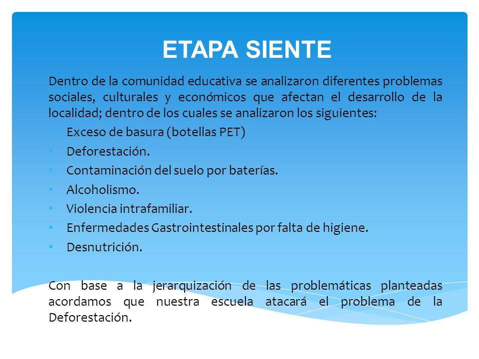 ETAPA SIENTE Dentro de la comunidad educativa se analizaron diferentes problemas sociales, culturales y económicos que afectan el desarrollo de la localidad; dentro de los cuales se analizaron los siguientes: Exceso de basura (botellas PET) Deforestación.