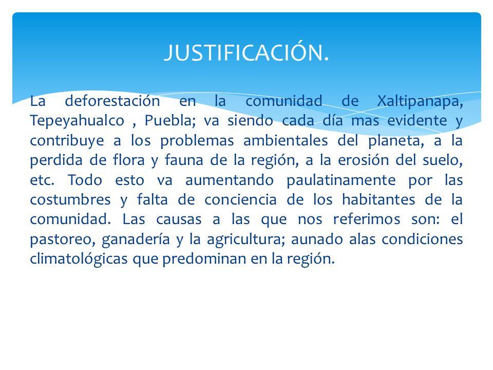 La deforestación en la comunidad de Xaltipanapa, Tepeyahualco, Puebla; va siendo cada día mas evidente y contribuye a los problemas ambientales del planeta, a la perdida de flora y fauna de la región, a la erosión del suelo, etc.