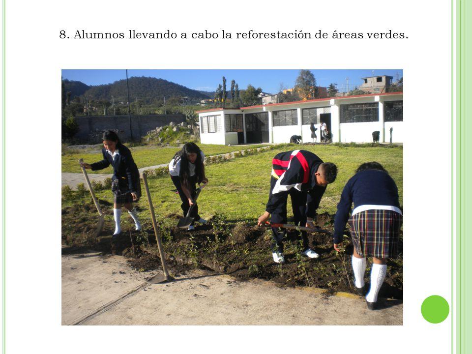 8. Alumnos llevando a cabo la reforestación de áreas verdes.