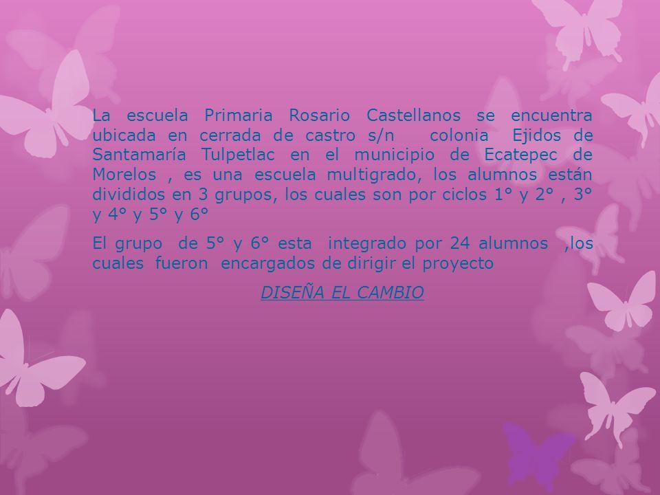 La escuela Primaria Rosario Castellanos se encuentra ubicada en cerrada de castro s/n colonia Ejidos de Santamaría Tulpetlac en el municipio de Ecatepec de Morelos, es una escuela multigrado, los alumnos están divididos en 3 grupos, los cuales son por ciclos 1° y 2°, 3° y 4° y 5° y 6° El grupo de 5° y 6° esta integrado por 24 alumnos,los cuales fueron encargados de dirigir el proyecto DISEÑA EL CAMBIO