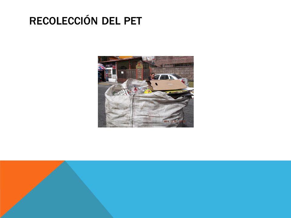 COLOCANDO BOTES DE BASURA EN EL PARQUE
