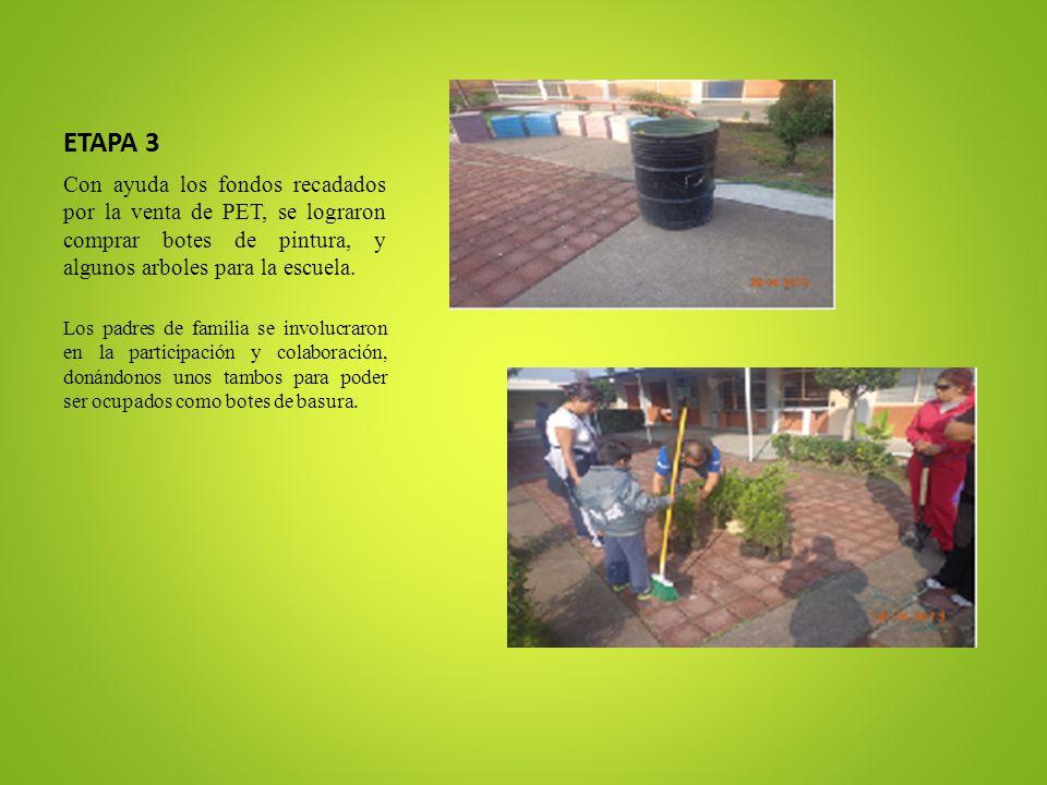 ETAPA 3 Con ayuda los fondos recadados por la venta de PET, se lograron comprar botes de pintura, y algunos arboles para la escuela. Los padres de fam