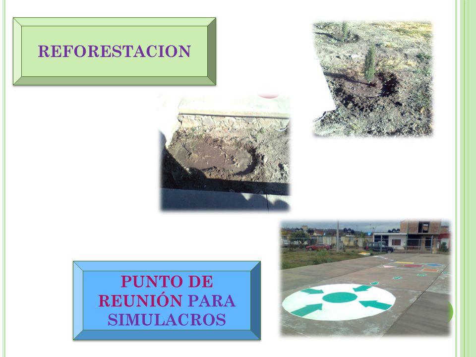 REFORESTACION PUNTO DE REUNIÓN PARA SIMULACROS