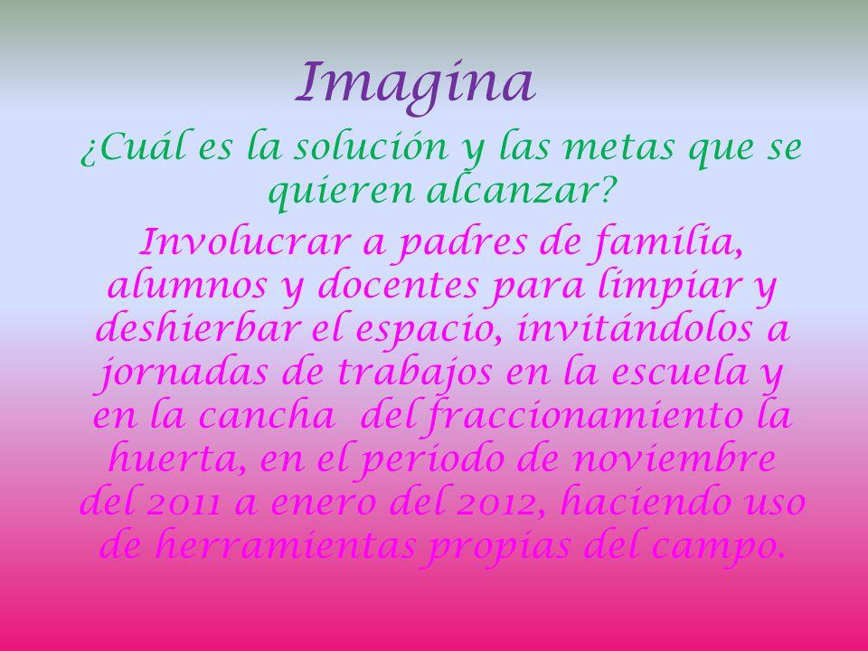 Imagina ¿Cuál es la solución y las metas que se quieren alcanzar.