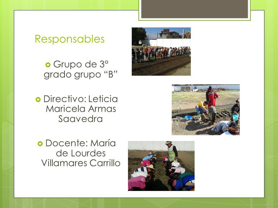 Responsables Grupo de 3° grado grupo B Directivo: Leticia Maricela Armas Saavedra Docente: María de Lourdes Villamares Carrillo