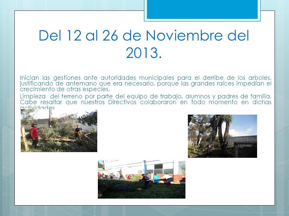 Del 12 al 26 de Noviembre del 2013. Inician las gestiones ante autoridades municipales para el derribe de los arboles, justificando de antemano que er