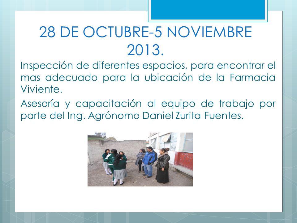 28 DE OCTUBRE-5 NOVIEMBRE 2013. Inspección de diferentes espacios, para encontrar el mas adecuado para la ubicación de la Farmacia Viviente. Asesoría