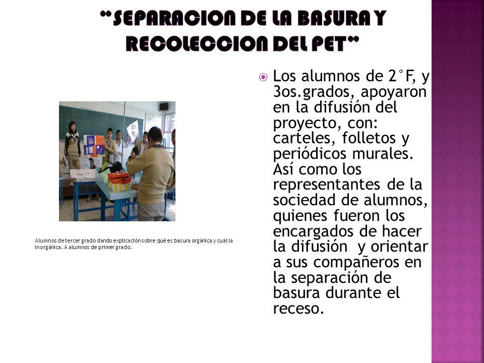 Los alumnos de 2°F, y 3os.grados, apoyaron en la difusión del proyecto, con: carteles, folletos y periódicos murales.