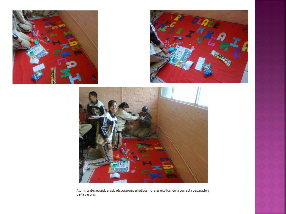 La separación se hizo en orgánica (bote verde), inorgánica (bote gris) y recolección del PET (botellas de plástico).