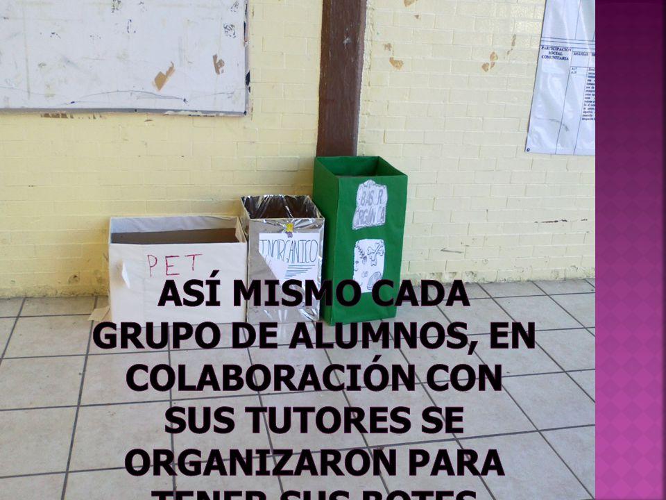 Los alumnos de segundo grado y tercero, pasaban a supervisar que se llevara acabo la correcta separación de la basura.
