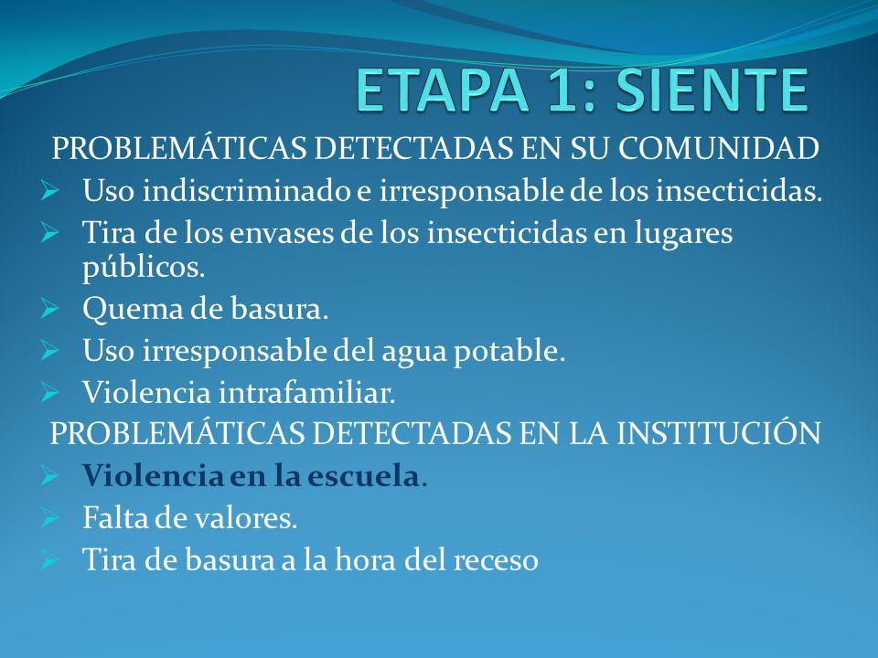 PROBLEMÁTICAS DETECTADAS EN SU COMUNIDAD Uso indiscriminado e irresponsable de los insecticidas. Tira de los envases de los insecticidas en lugares pú