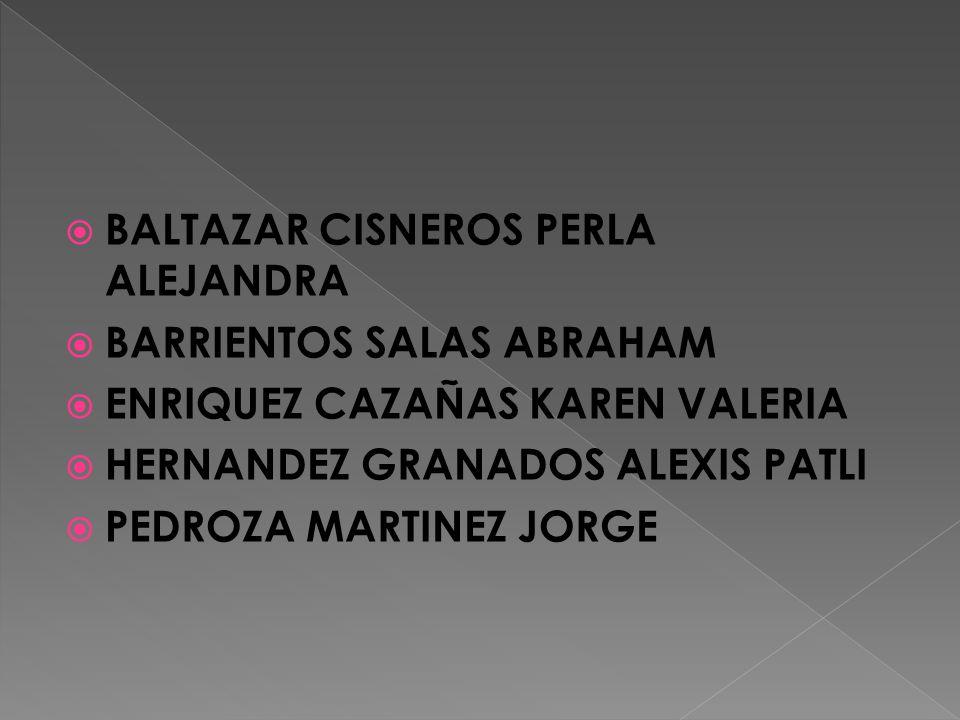 BALTAZAR CISNEROS PERLA ALEJANDRA BARRIENTOS SALAS ABRAHAM ENRIQUEZ CAZAÑAS KAREN VALERIA HERNANDEZ GRANADOS ALEXIS PATLI PEDROZA MARTINEZ JORGE