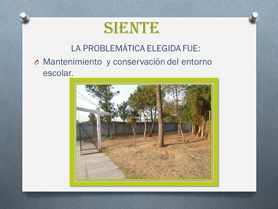 SIENTE LA PROBLEMÁTICA ELEGIDA FUE: O Mantenimiento y conservación del entorno escolar.