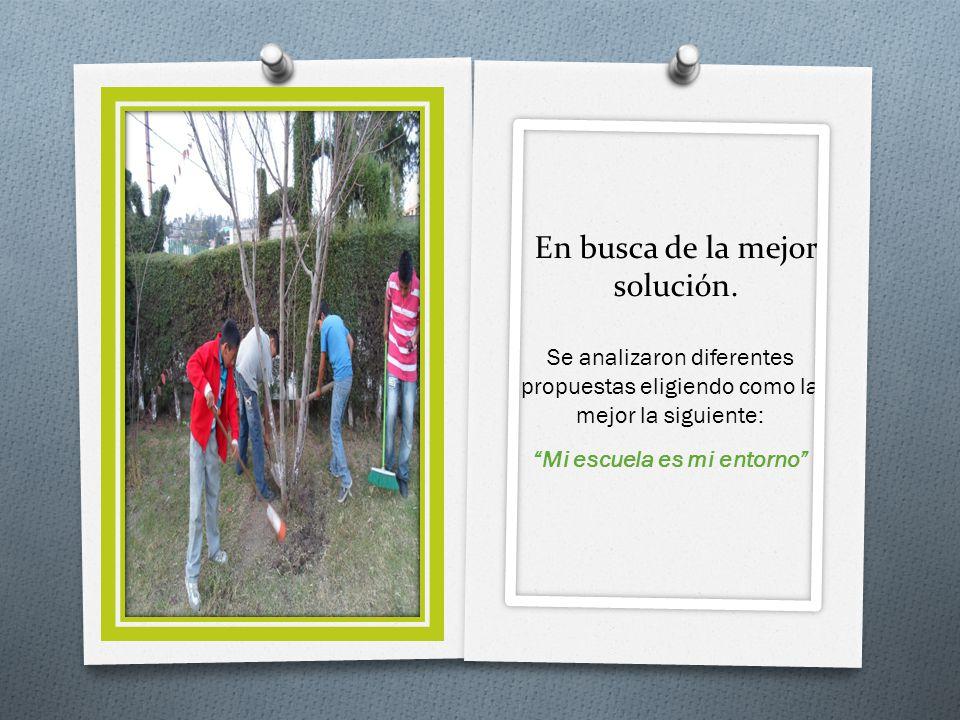 HAZ 1 2 O En coordinación con los profesores se hizo acopio de herramientas de jardinería para llevar a cabo las actividades planeadas.