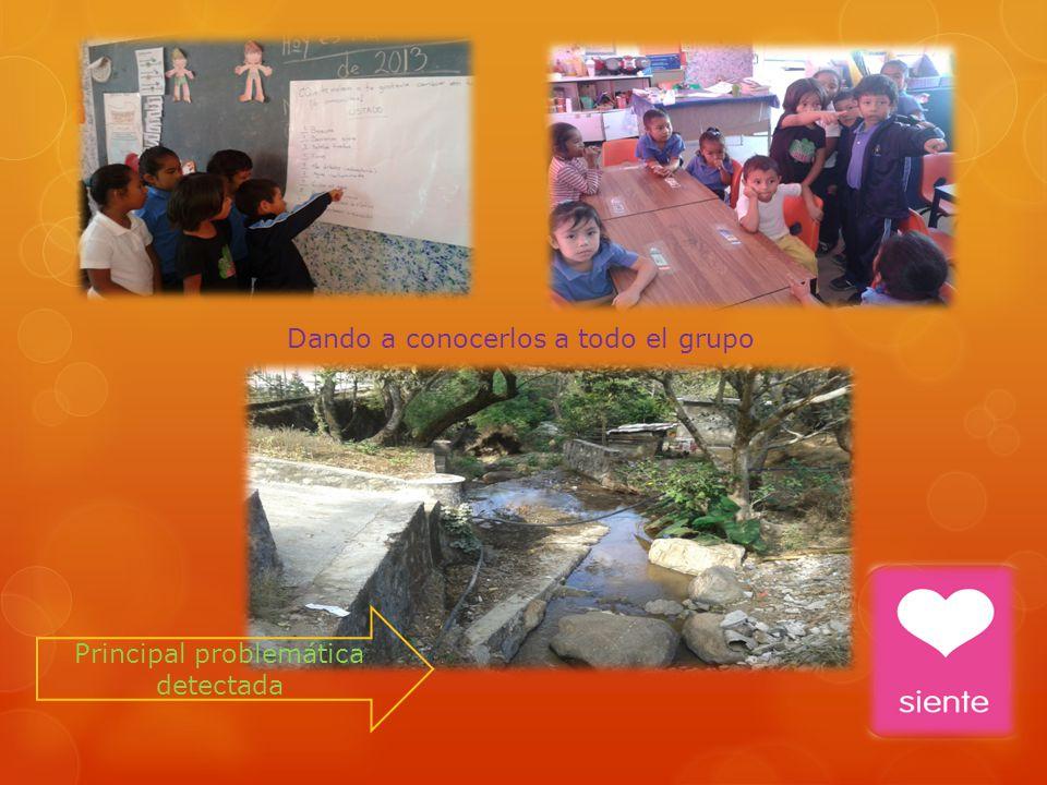 Investigación por parte del equipo para dar a conocer causas y consecuencias del problema.