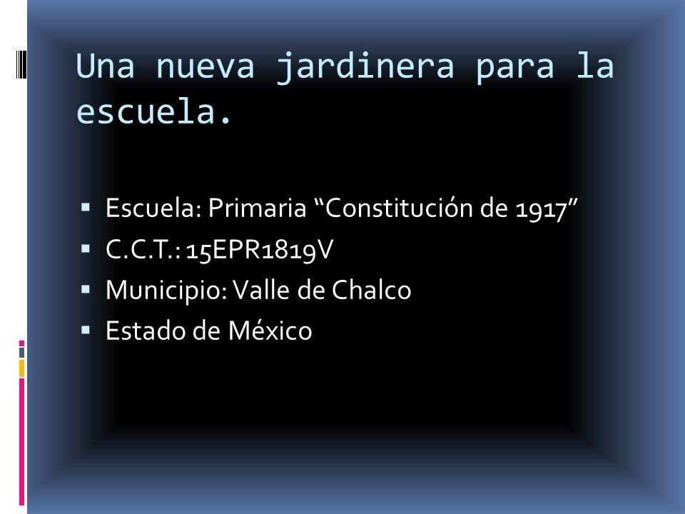 Una nueva jardinera para la escuela. Escuela: Primaria Constitución de 1917 C.C.T.: 15EPR1819V Municipio: Valle de Chalco Estado de México