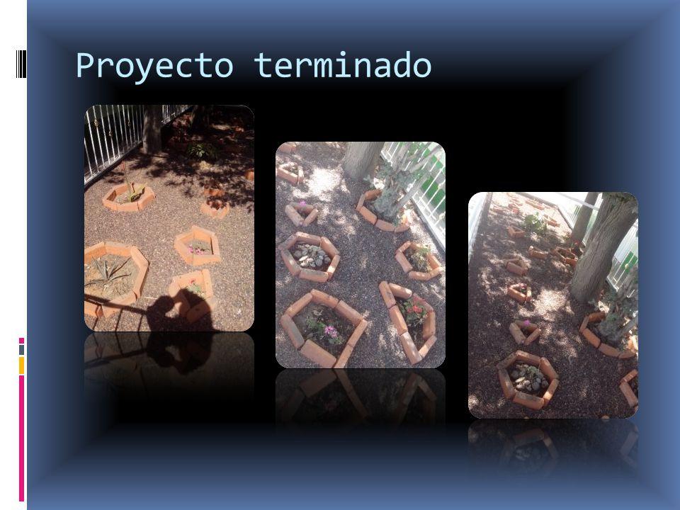 Proyecto terminado
