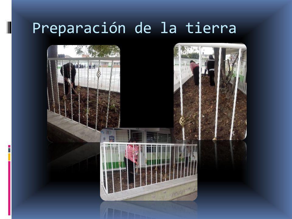 Preparación de la tierra