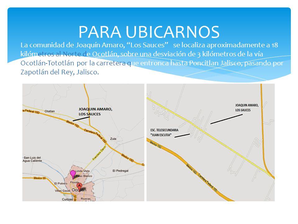 PARA UBICARNOS La comunidad de Joaquín Amaro, Los Sauces se localiza aproximadamente a 18 kilómetros al Norte de Ocotlán, sobre una desviación de 3 ki