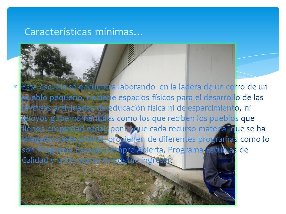 Esta escuela se encuentra laborando en la ladera de un cerro de un pueblo pequeño, no tiene espacios físicos para el desarrollo de las diversas activi