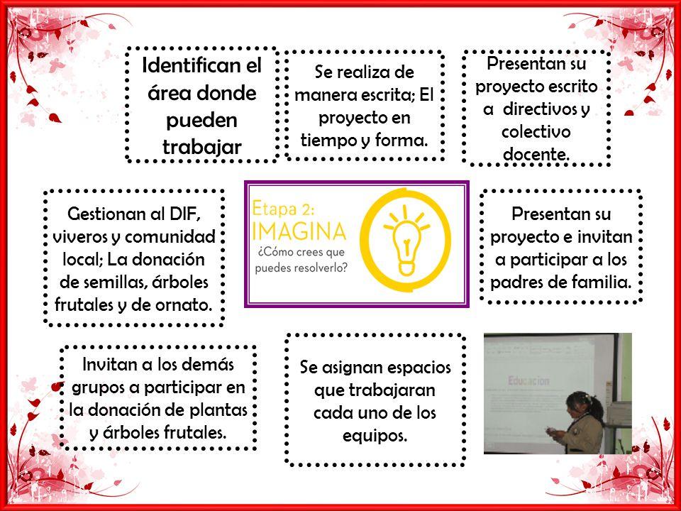 Identifican el área donde pueden trabajar Presentan su proyecto escrito a directivos y colectivo docente.