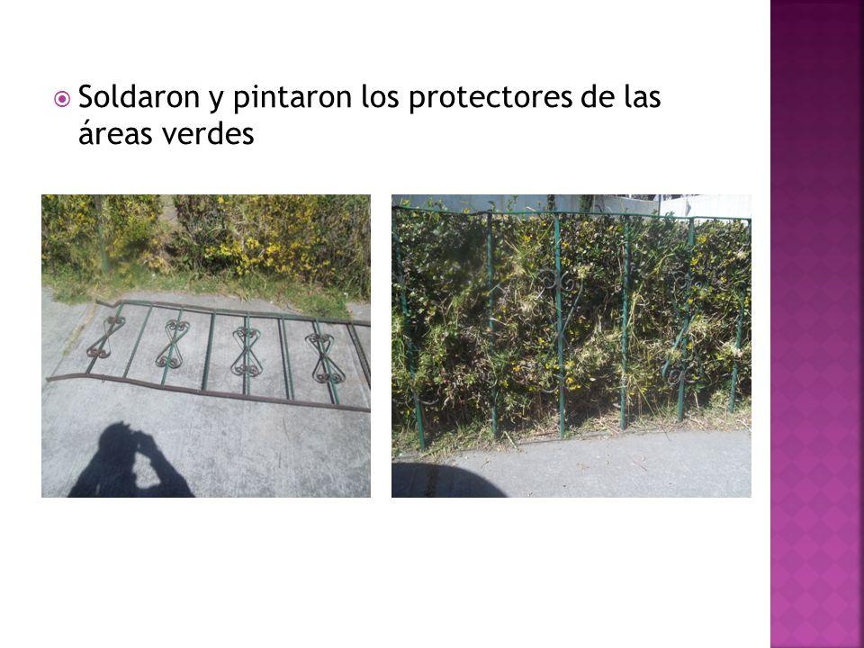 Soldaron y pintaron los protectores de las áreas verdes