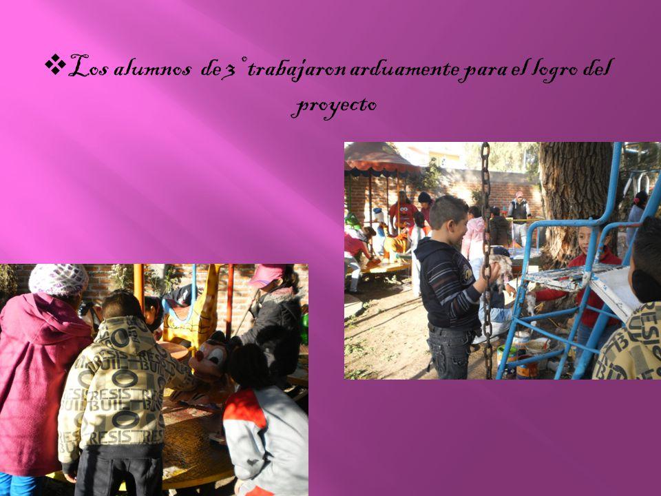 Los alumnos de 3º trabajaron arduamente para el logro del proyecto