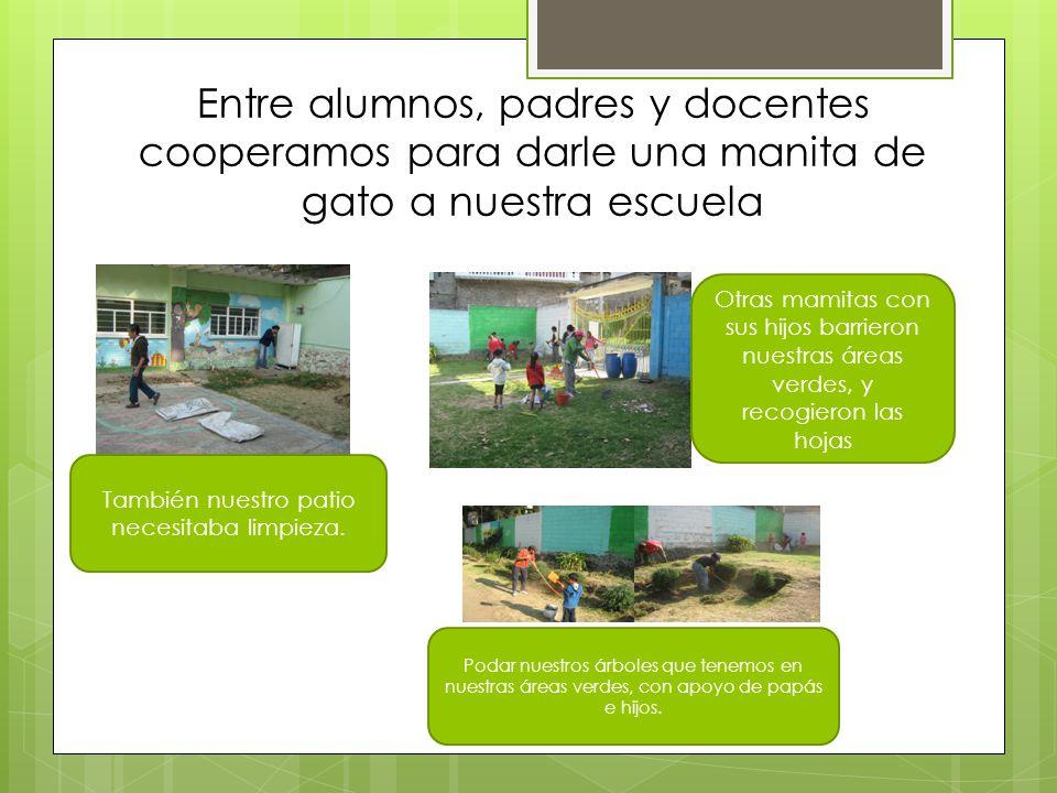 Entre alumnos, padres y docentes cooperamos para darle una manita de gato a nuestra escuela También nuestro patio necesitaba limpieza. Otras mamitas c